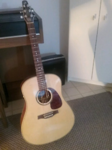 Seagull Maritime SWS QIT Acoustic/Electric