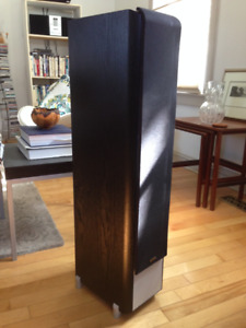 GREAT SPEAKERS for stereo system or surround-sound fill-in
