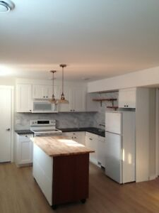 BRAND NEW LEGAL, bright and open 1 Bdrm basement suite
