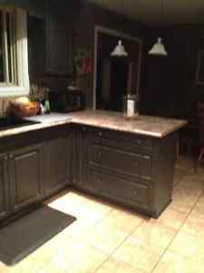 Cabinet Painter Kitchener / Waterloo Kitchener Area image 2