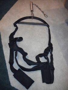 Adult play swing / sling Windsor Region Ontario image 1