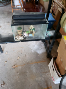 5 gallon fish or reptile aquarium with a the accessories needed