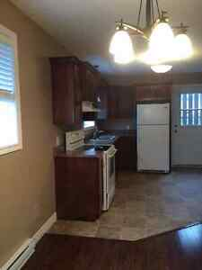 2 bdrm incl. wifi, hd tv, wash/dryer pou Kenmount Terrace