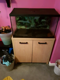 ( sorry Sold )100 litre fish tank aquarium with stand