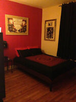 4 1/2 Ville-Emard Oct / Nov *accepte animaux/ pet friendly