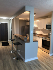2 Bedroom Condo For rent - RENOVATED AND GREAT LOCATION!