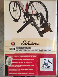 Schwinn Indoor Delux Magnetic Bike Trainer