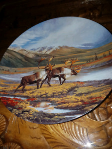 Variety collectable plates