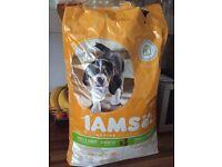 IAMS puppy & junior medium breed dry dog food