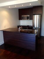 3 1/3 condo for RENT, Atwater Market