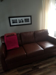 100% Italian Leather Pullout Couch