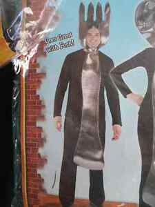 SALE! Adult Costumes!  Kids costumes in my other ads Kawartha Lakes Peterborough Area image 9