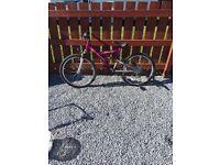 Vamp A5 bike for sale