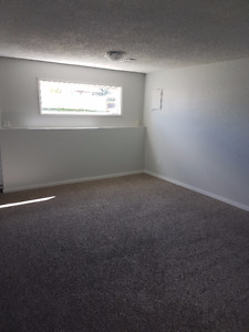 Newly Remodeled 1 Bedroom Basement Suite