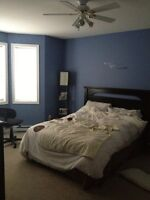 3 bedroom aaprttment for rent available Sept 1