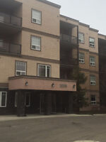 2 Bedroom Executive Condo Living in West End
