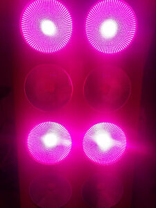 Full spectrum 1536W COB LED grow Light HPS Killer hydroponic Peterborough Peterborough Area image 2