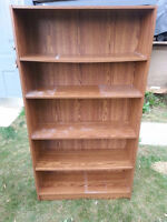Tall bookcase with adjustable shelves (#012)