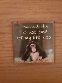 I Would Like To Use One Of My Lifelines Magnet