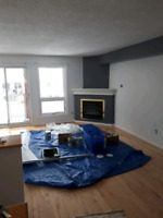 Very experienced painter available.
