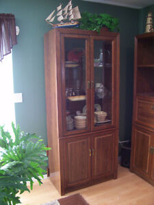 One Piece Wall unit With Glass Doors