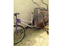 Wheelbarrow & bike need tlc
