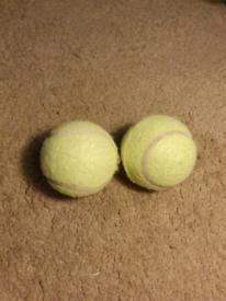 Tennis balls x2