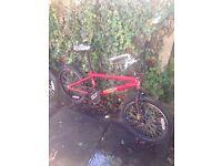BMX Bikes (2)