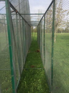 Large aviaries for sale