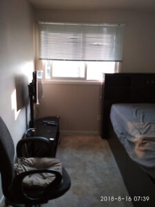 Room in upper floor for rent to a young male student only