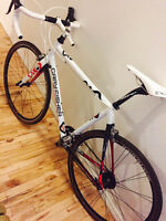 Gary Fisher (Trek) Arc Pro Compact 57cm