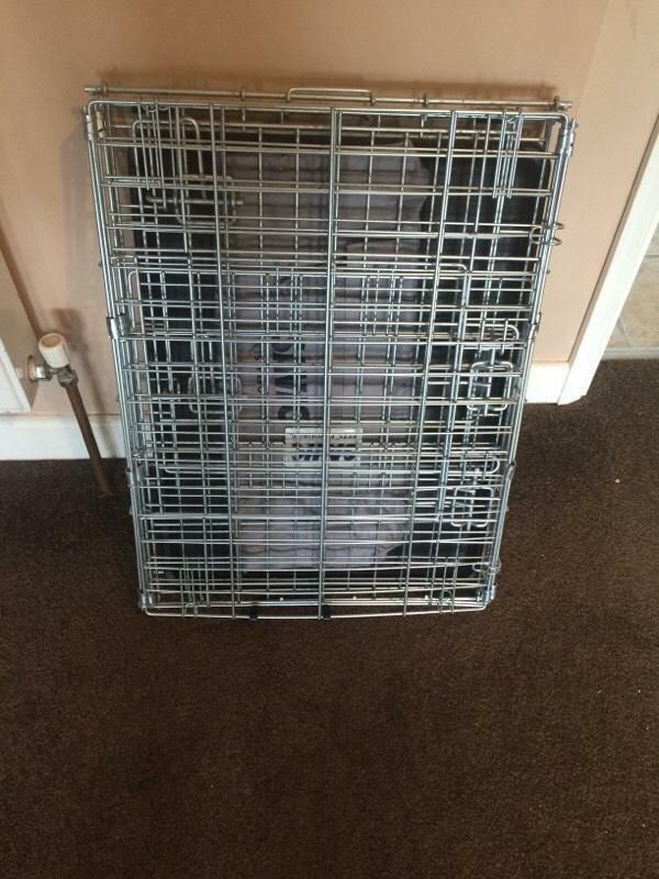 Medium dog crate in twyford berkshire gumtree for Job lot dog crate