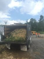 Free woodchips