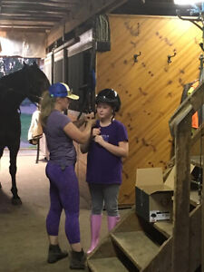 Horseback Riding Lessons - Buy 3 Get 1 Free