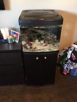 BioCube 29 - salt water tank with stand