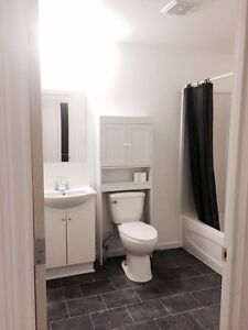 2 bedroom 1 bath unit for rent in downtown Drumheller