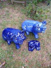 Garden Pigs