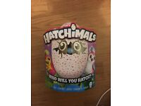 New Hatchimals Pink Egg Sold Out
