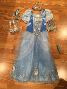 Cinderella costume and accessories