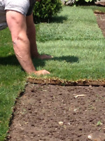 Sodding & Landscaping