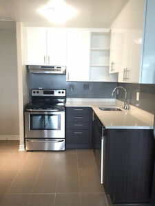 COMPLETELY NEW APARTMENT FOR RENT IN THE HEART OF PLATEAU MTL