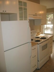 Large, Newly Renovated, 3-Bedroom Condo for Rent