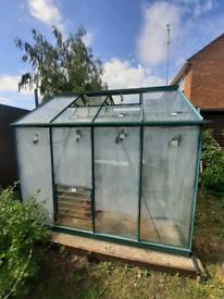Rhino Premium Greenhouse 8' x 6'