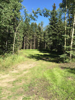 Red Deer County Acreage for Sale