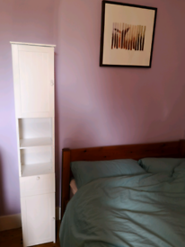 Tall book case / bedside cabinet 170.5x28x23cm