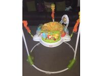 Jungle Jumperoo