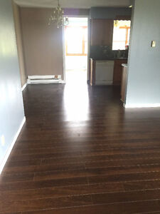 Completely Renovated Large 2 Bedroom Modular Home London Ontario image 2