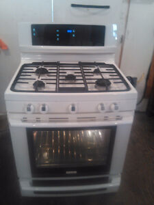 6 month old Electrolux gas range