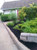 Steve's Landscaping Best Price Guaranteed