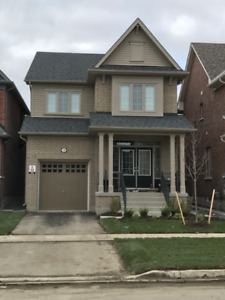 New 4 Bdrm house for rent- Simcoe & Britannia, N. Oshawa - $2000